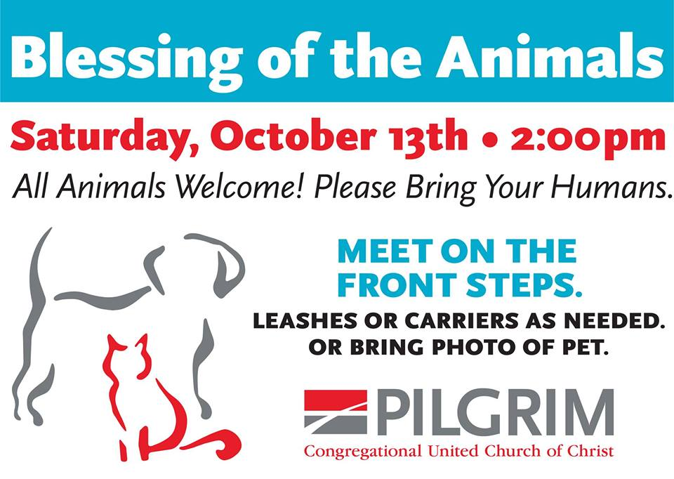 Blessing of the Animals Event at Pilgrim Congregational UCC